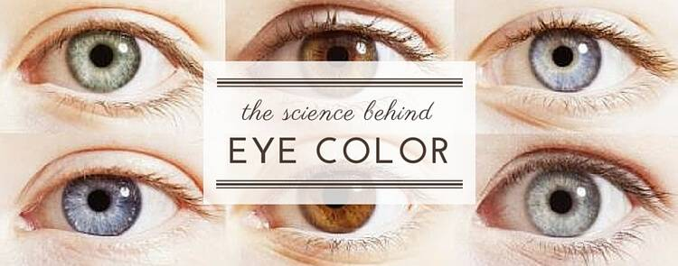 science eye color